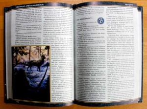 Hellfrost Spielerhandbuch - Mit wenigen, dafür guten Zeichnungen